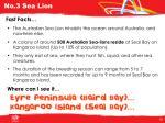 no 3 sea lion1