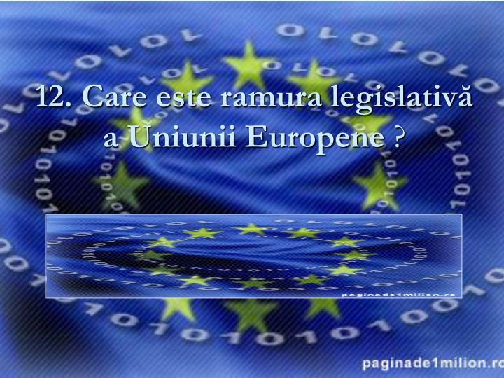 12. Care este ramura legislativă a Uniunii Europene