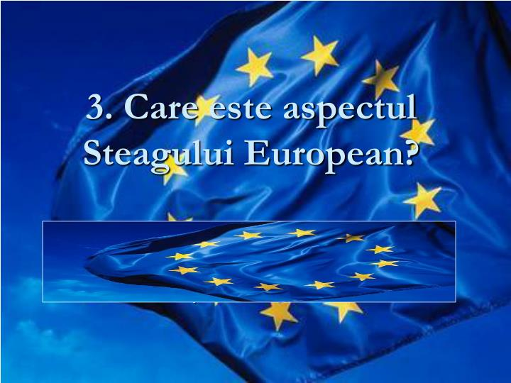 3. Care este aspectul Steagului European?