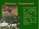 behaviour temperament