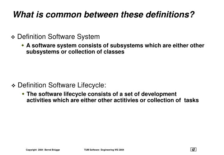 Definition Software System