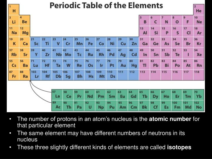 The number of protons in an atom's nucleus is the