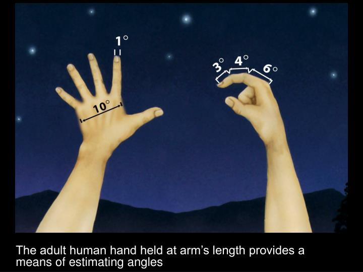 The adult human hand held at arm's length provides a means of estimating angles