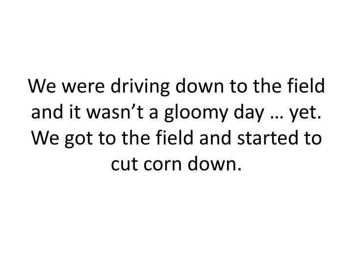 We were driving down to the field and it wasn't a gloomy day … yet. We got to the field and started to cut corn down.
