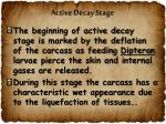 active decay stage1
