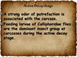 active decay stage2