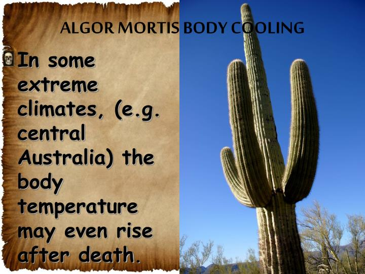 ALGOR MORTIS BODY COOLING