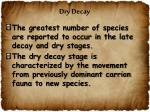 dry decay1