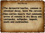 dry decay2