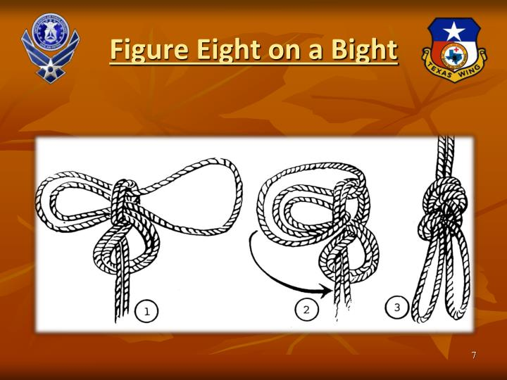 Figure Eight on a Bight
