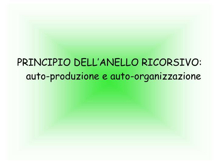 PRINCIPIO DELL'ANELLO RICORSIVO: auto-produzione e auto-organizzazione