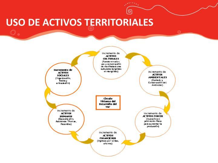 USO DE ACTIVOS TERRITORIALES