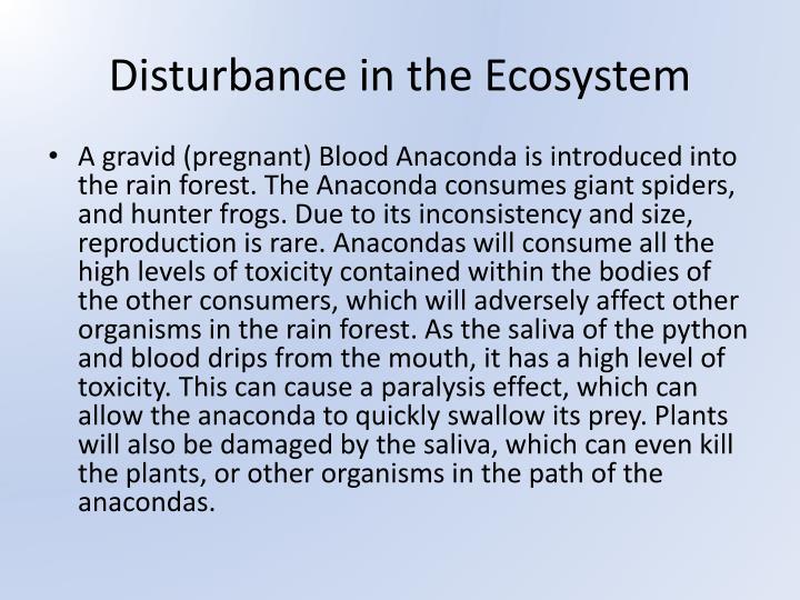 Disturbance in the Ecosystem