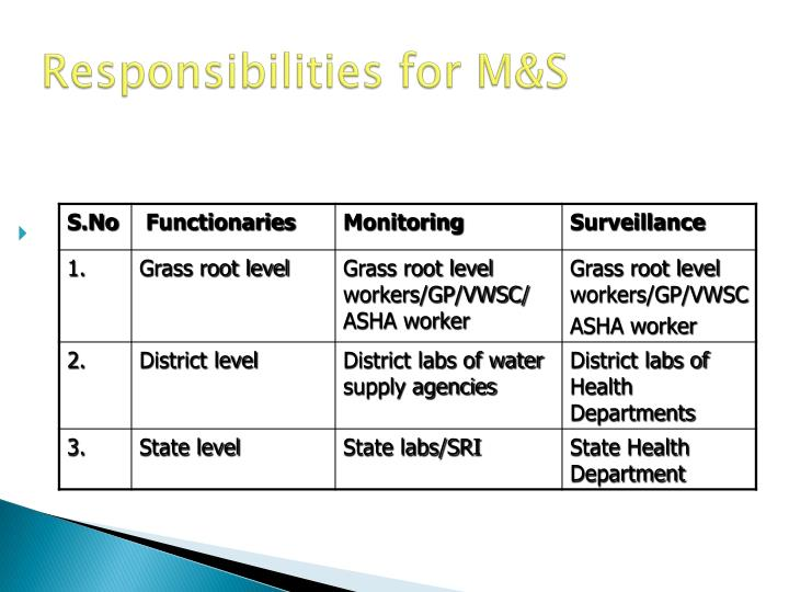 Responsibilities for M&S