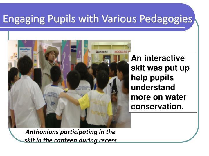 Engaging Pupils with Various Pedagogies