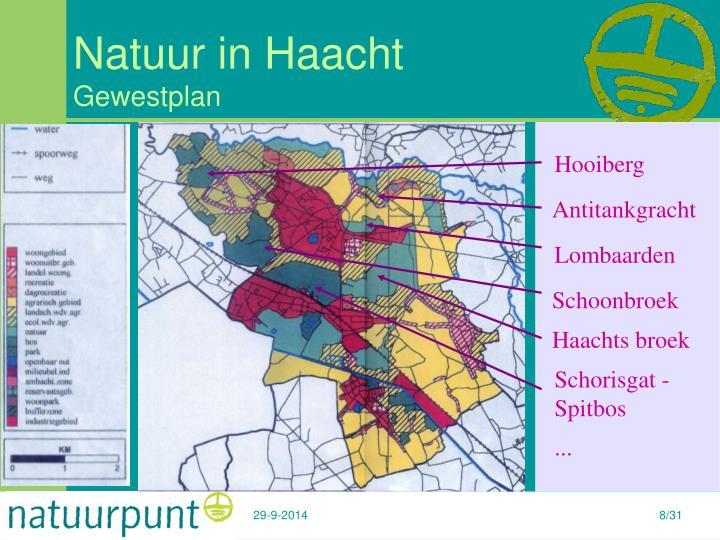 Natuur in Haacht