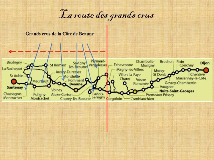 La route des grands crus