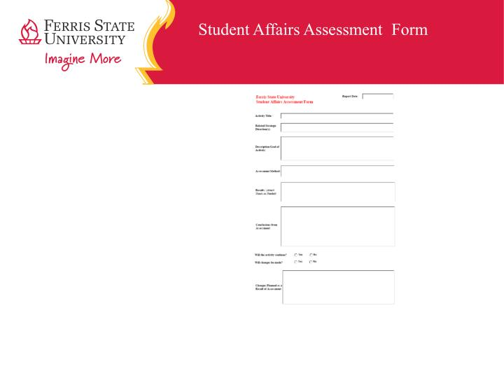 Student Affairs Assessment	Form
