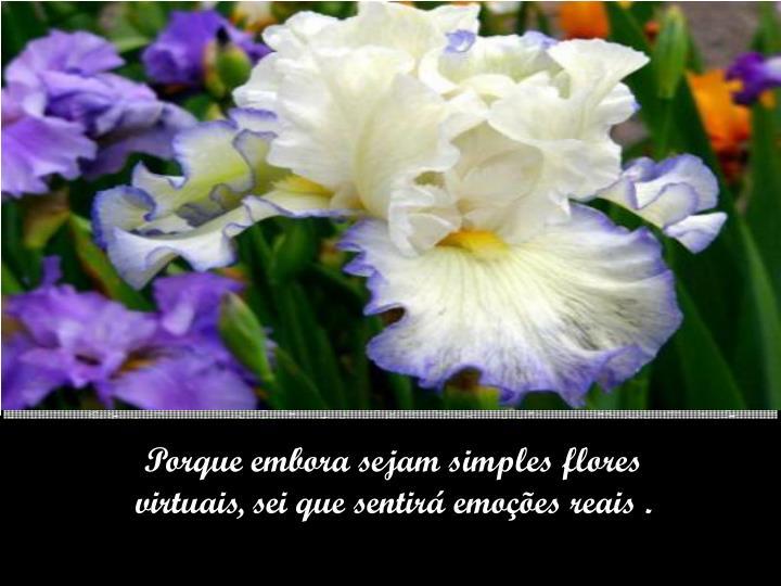 Porque embora sejam simples flores