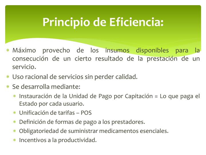 Principio de Eficiencia: