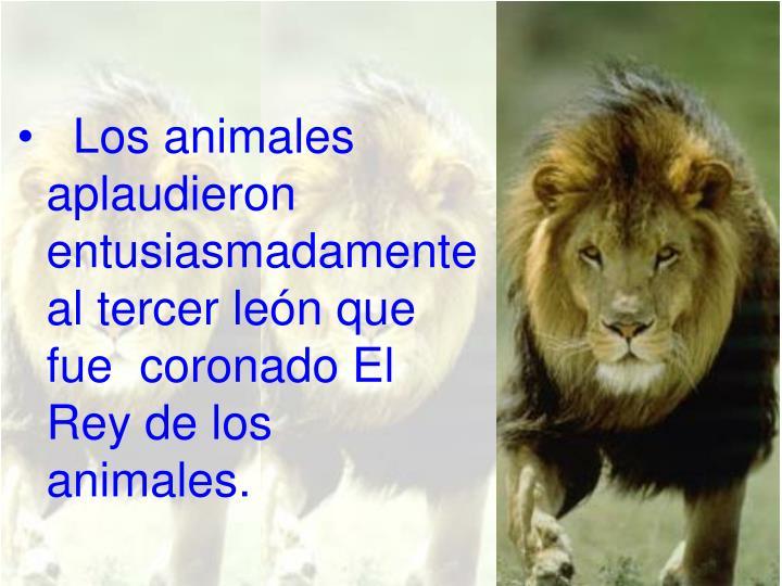 Los animales aplaudieron entusiasmadamente al tercer león que