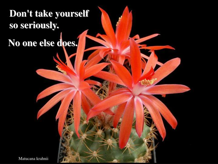 Don't take yourself