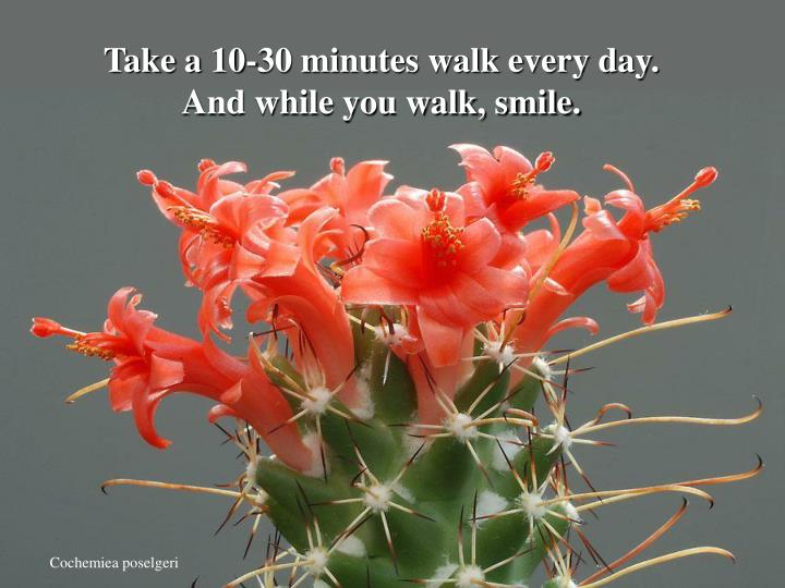 Take a 10-30 minutes walk every day.