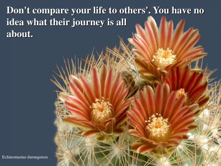 Don't compare your life to others'. You have no idea what their journey is all