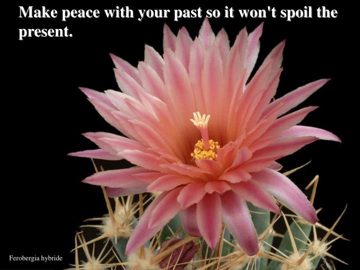 Make peace with your past so it won't spoil the present.