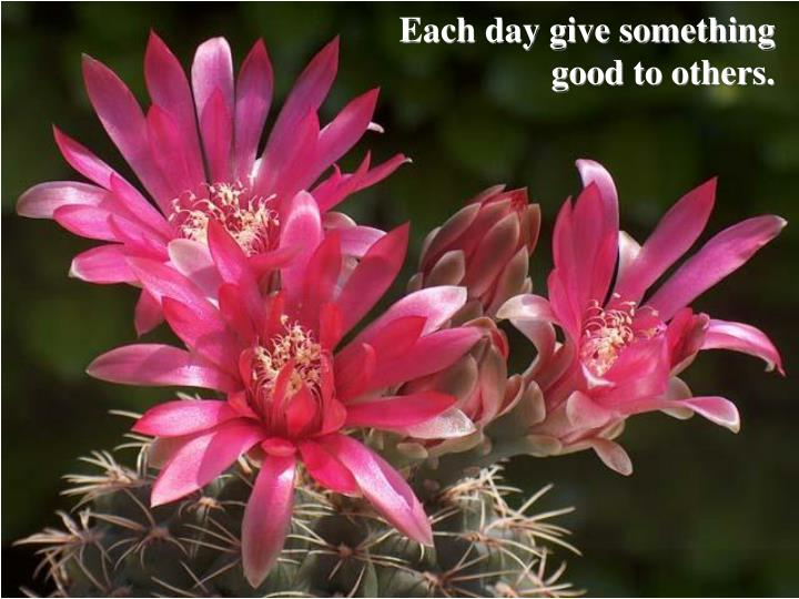 Each day give something