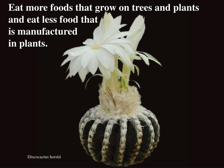 Eat more foods that grow on trees and plants and eat less food that
