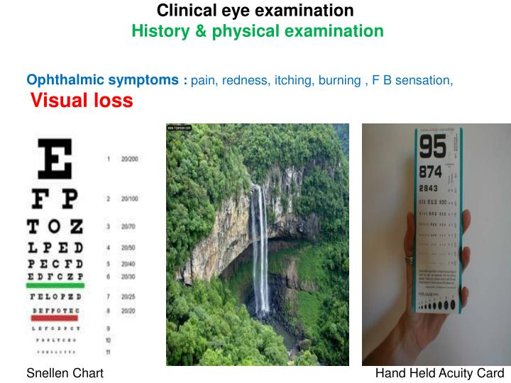 history and physical examination 2 essay Patient history and physical exam clearly, taking the patient history and physical exam is one of the most important functions in any medical office workflow system.