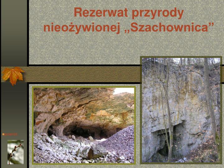 """Rezerwat przyrody nieożywionej """"Szachownica"""""""