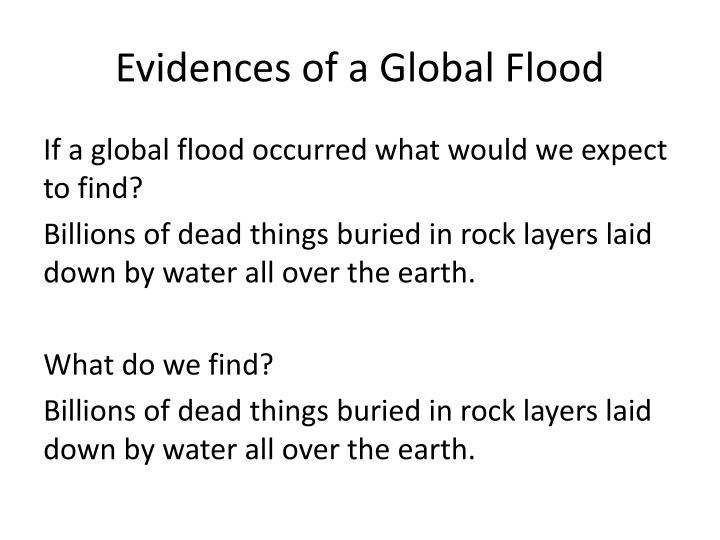 Evidences of a Global Flood