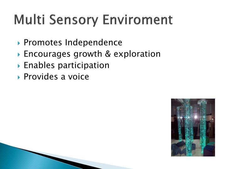 Multi Sensory