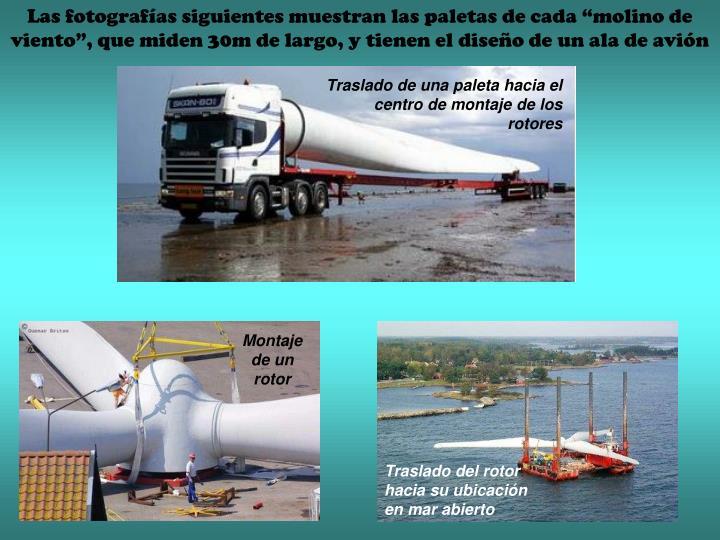 """Las fotografías siguientes muestran las paletas de cada """"molino de viento"""", que miden 30m de largo, y tienen el diseño de un ala de avión"""