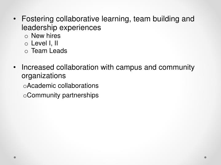 Fostering collaborative learning, team building and leadership experiences