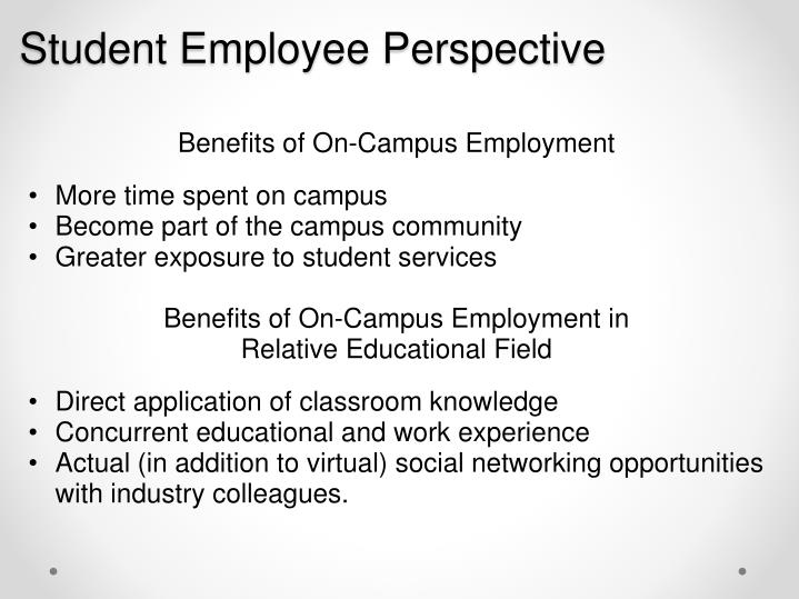 Student Employee Perspective