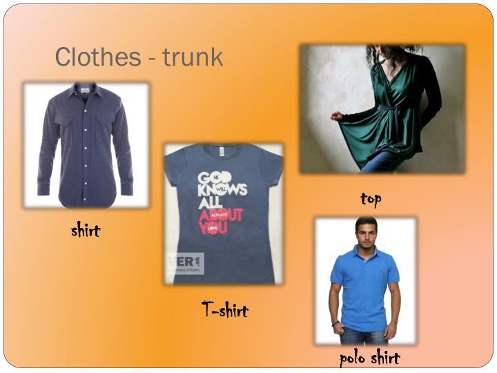 Clothes - trunk