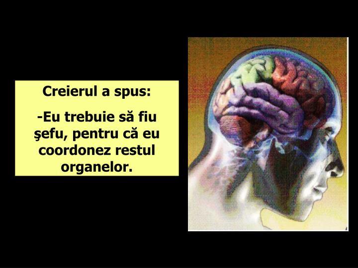 Creierul a spus: