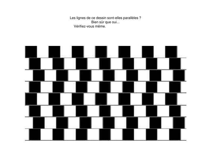 Les lignes de ce dessin sont-elles parallèles ?