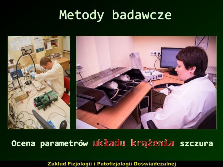 Metody badawcze