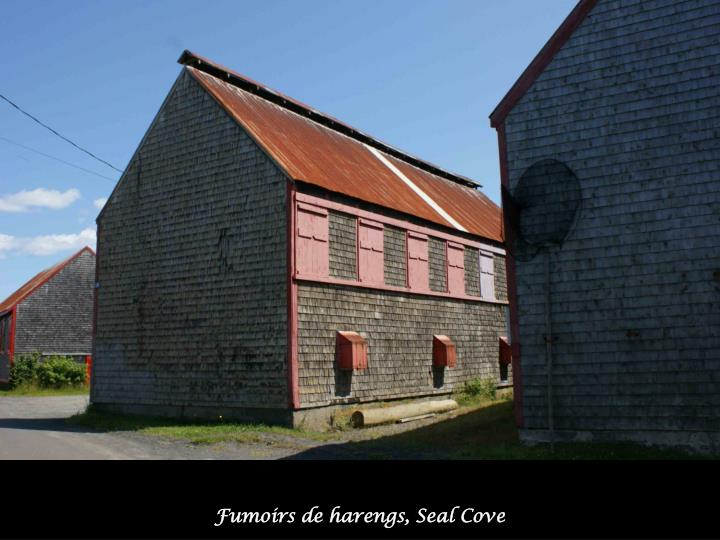 Fumoirs de harengs, Seal Cove