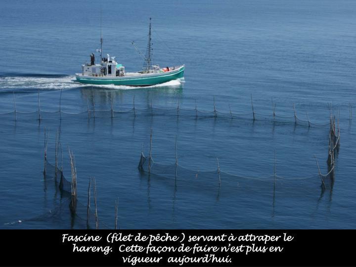 Fascine  (filet de pêche ) servant à attraper le hareng.  Cette façon de faire n'est plus en vigueur  aujourd'hui.