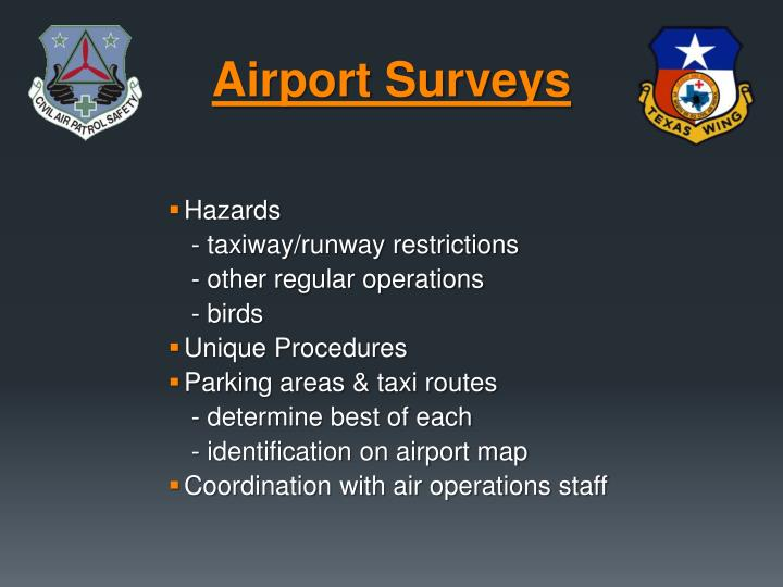 Airport Surveys