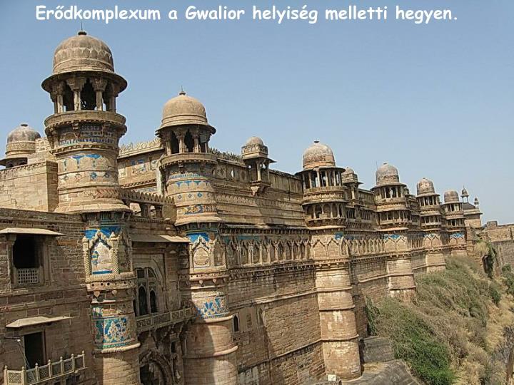 Erdkomplexum a Gwalior helyisg melletti hegyen.