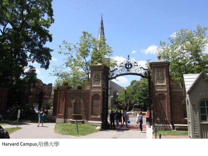 Harvard Campus,