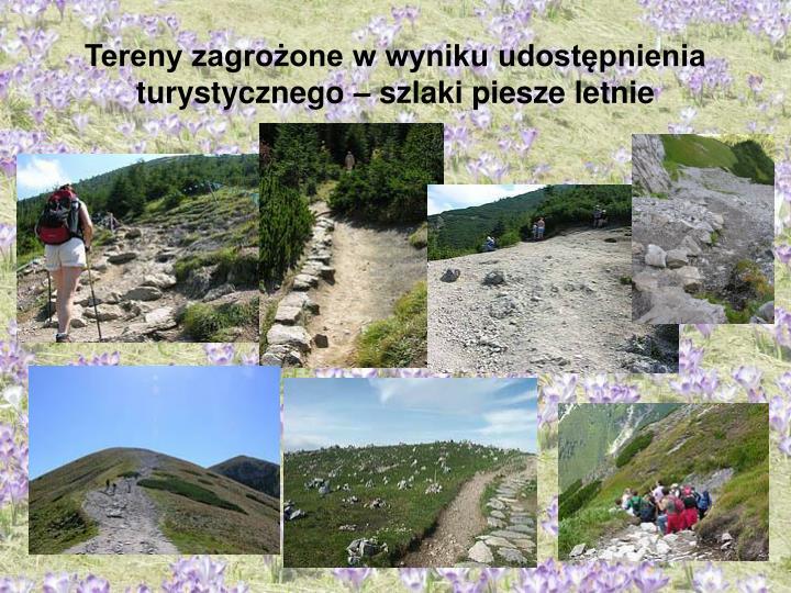 Tereny zagrożone w wyniku udostępnienia turystycznego – szlaki piesze letnie