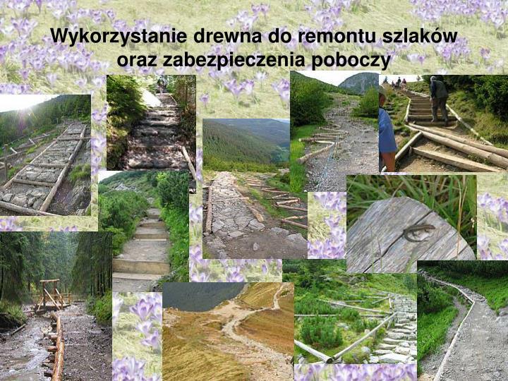 Wykorzystanie drewna do remontu szlaków oraz zabezpieczenia poboczy