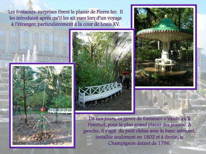 Les fontaines-surprises firent le plaisir de Pierre Ier.  Il les introduisit aprs quil les ait vues lors dun voyage  ltranger, particulirement  la cour de Louis XV.